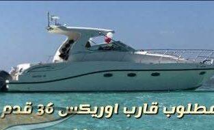 مطلوب للشراء قارب اوريكس